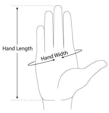 Taille de main